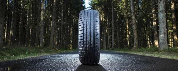 tyre on wet road in woods