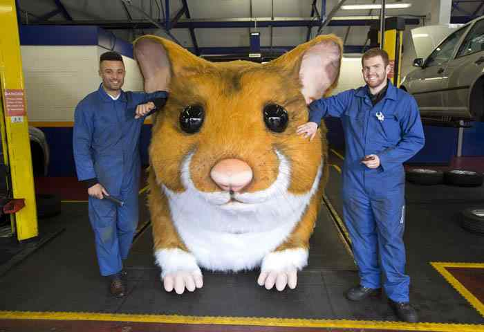 Giant hamster in Kwik Fit