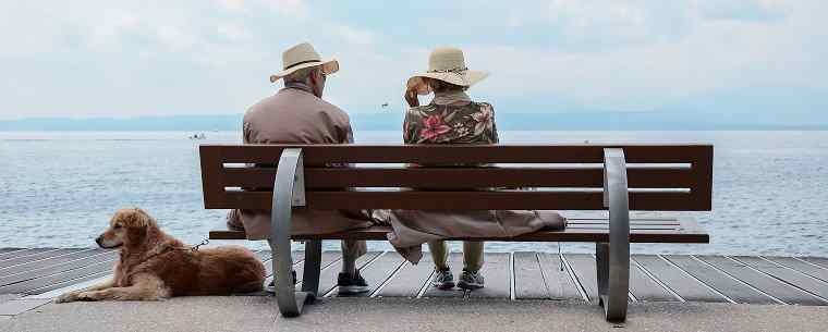 old couple sitting on bench with dog overlooking sea
